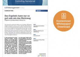 Raus aus dem Controlling Hamsterrad: Erfolgreiches Controlling